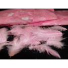 Decorative Coloured Feathers 12g Pink (2163)