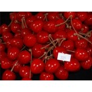 50 Artificial Decorative Cherry's Red (2225)