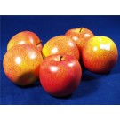 6 Artificial Decorative Apples Red-Yellow (3066)