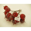 12 Christmas Sugar Apples On Wire (4398)