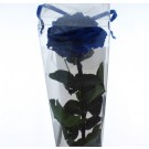 Preserved Rose with stem Premium Blue (4527)