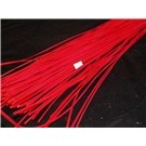 200g 1m Flat Belt Rattan Twigs Red (2228)