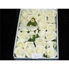 24 Foam Roses Light Yellow  (2271)