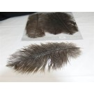3 Ostrich feathers Dark-Light Grey (2174)