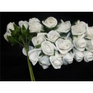 12 Foam 'Princess' Rose Buds White (2651)