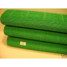 Floristry and Crafts Crepe Paper Green (310)